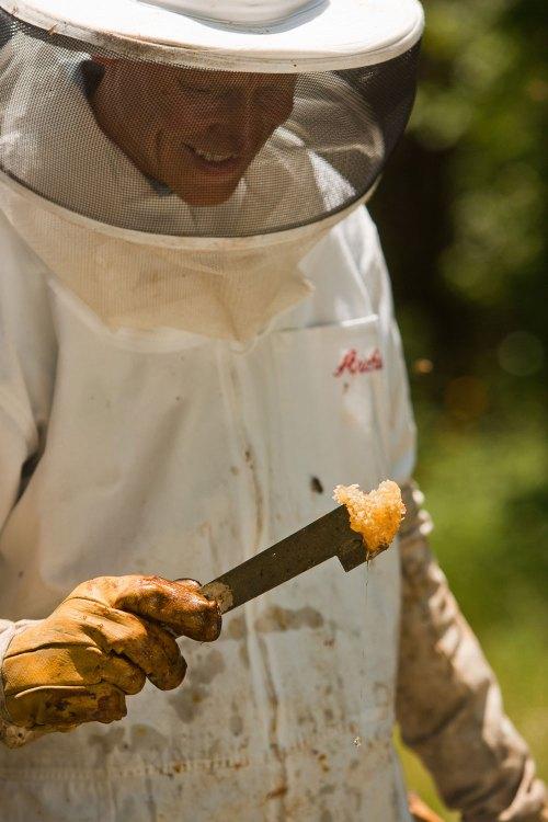 Beekeeper Glenn Cobbs